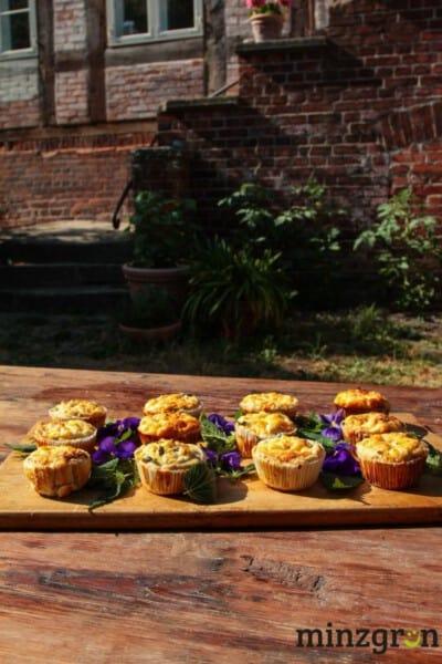 Brennnessel Muffins